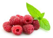 Free Raspberry With Fresh Mint Royalty Free Stock Photo - 20160295