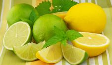 Citrus With Mint Stock Images