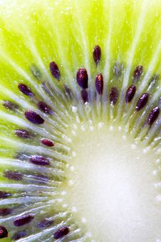 Free Inner Part Of Kiwi Fruit Close-up Royalty Free Stock Photos - 20161618