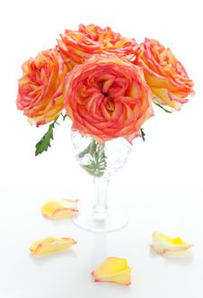 Free Roses In Vase Stock Photos - 20163043