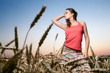 Free Woman In Wheat Field Stock Photos - 20164683