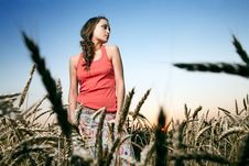 Woman In Wheat Field Royalty Free Stock Image