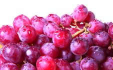 Free Image Of Red Grape With Water Drops Stock Images - 20166144