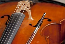 Free Violin Stock Photo - 20166350