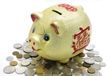 Free Piggy Bank Stock Photography - 20169392