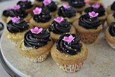 Chocolate Cream Cupcakes Royalty Free Stock Photo