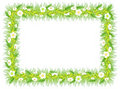 Free Frame With Green Grass Flowers And Leaves Royalty Free Stock Image - 20171456
