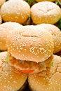 Free Hamburger Stock Images - 20177074