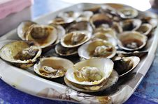 Free Barbeque Clam Stock Photo - 20170020