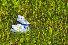 Free Blue Sandals/flip Flops Stock Photography - 20171442