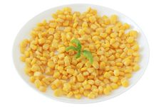 Free Corn On A Plate Stock Image - 20173161