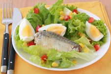 Free Salad With Sardines Stock Image - 20173191
