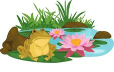 Free Frog Lotus River Stock Photography - 20173212