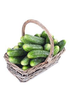Harvest Cucumbers In A Basket Royalty Free Stock Photography