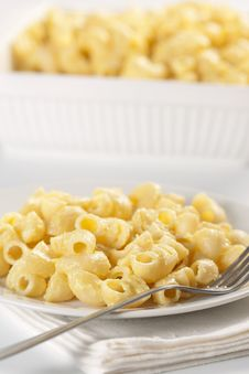 Free Macaroni And Cheese Stock Photo - 20174180