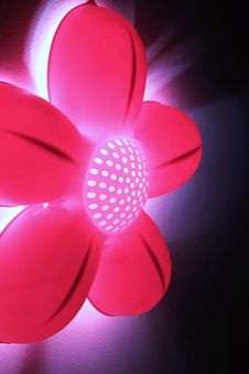 Free Bright Pink Abstract Flower Light Royalty Free Stock Photo - 20174515