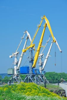 Free Cranes Royalty Free Stock Photography - 20175797