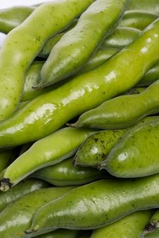 Free Broad Beans Royalty Free Stock Photos - 20176708
