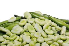 Free Broad Beans Stock Photo - 20176720