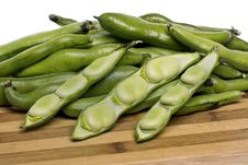 Free Broad Beans Stock Images - 20176994