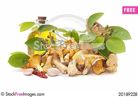 Free Cooking Ingredients And Mushrooms Royalty Free Stock Photos - 20189228