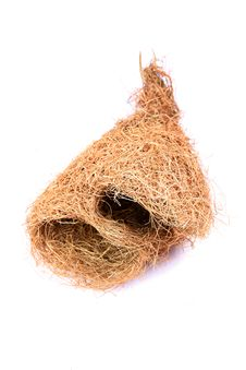 Free Weaver Bird Nest Royalty Free Stock Photography - 20180277