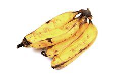 Free Hybrid Bananas Royalty Free Stock Image - 20180426