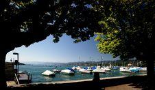 Lake Zurich Royalty Free Stock Image