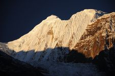 Free Annapurna Peak, Nepal Royalty Free Stock Image - 20187486