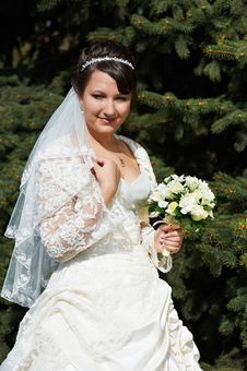 Free Happy Bride On Background Of Green Spruce Royalty Free Stock Photography - 20188597