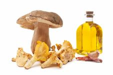Free Cooking Ingredients And Mushrooms Royalty Free Stock Image - 20189336