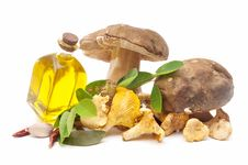 Free Edible Mushrooms And Olive Oil Stock Photos - 20189373