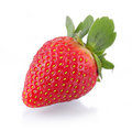Free Strawberry Stock Image - 20194261