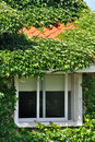 Free Villa Covered By Green Plant And Window Royalty Free Stock Photography - 20197397