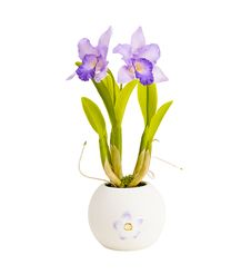 Free Artificial Orchid Flower Stock Photography - 20193192