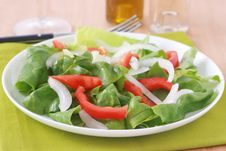 Free Salad With Oil Stock Images - 20193524