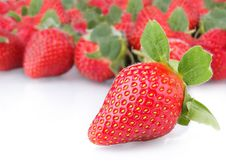 Free Strawberries Stock Image - 20194511