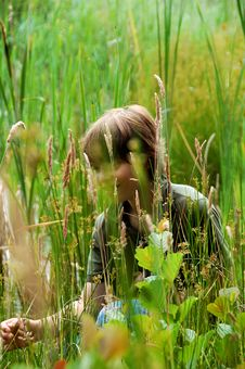 Free Hiding In The Field Royalty Free Stock Image - 20195496