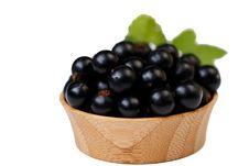 Free Blackberries Stock Photo - 20196100