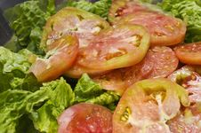 Lettuce Salad With Tomato Royalty Free Stock Images