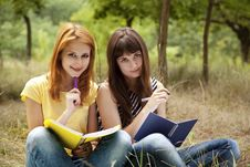 Free Girlfriends Doing Homework At The Park. Stock Photography - 20196622