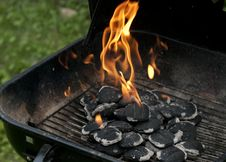 Free Charcoal And Flames Stock Photography - 20198952
