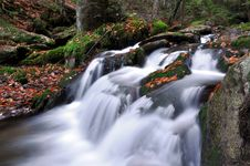 Free Autumn Creek In Bohemia Royalty Free Stock Photos - 20199618