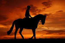 Free Rider On A Horse Royalty Free Stock Photos - 20199708