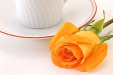 Free Rose At Breakfast Stock Image - 2020221