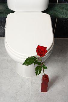 Free Toilet Stock Photography - 2020452