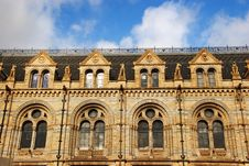 Natural History Museum -  Windows