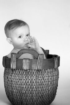 Free Basket Baby Stock Photography - 2023252