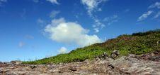 Free Landscape At  Hookipa Stock Image - 2025801