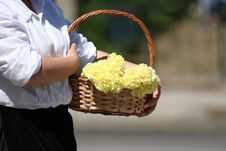Free Basket With Flowers Royalty Free Stock Photo - 2027485